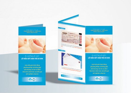 Leaflets, Brochures